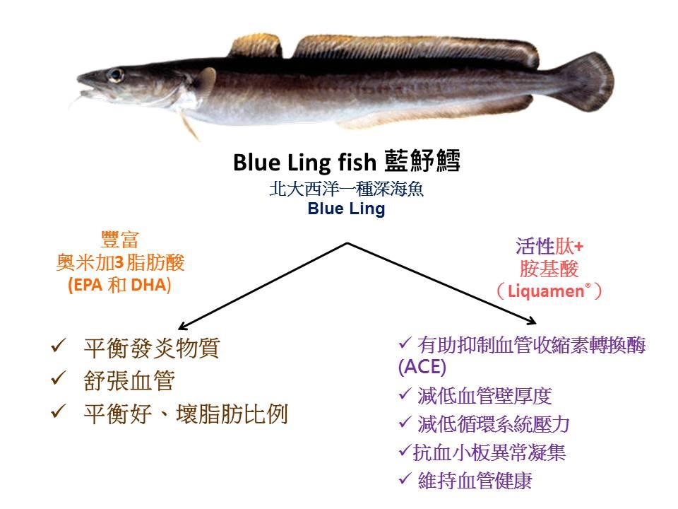 魚類活勝肽+魚油的協同作用
